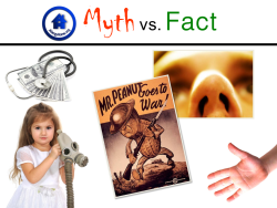 Food Allergy & Anaphylaxis Myths